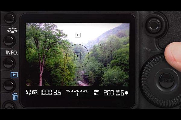 300 عکس برای ثبت جهانی جنگل های هیرکانی