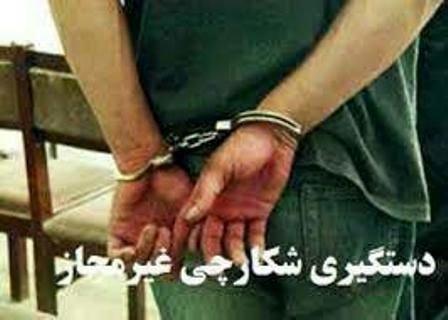 دستگیری هواداران شکار خرگوش در آذربایجان غربی