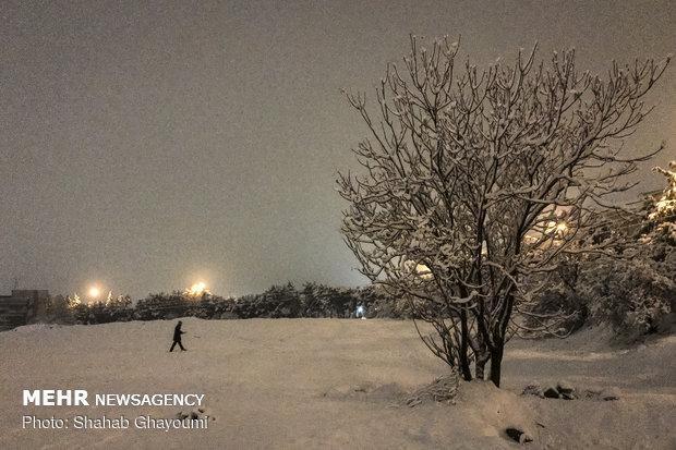 بارش برف در ایلام شروع شد
