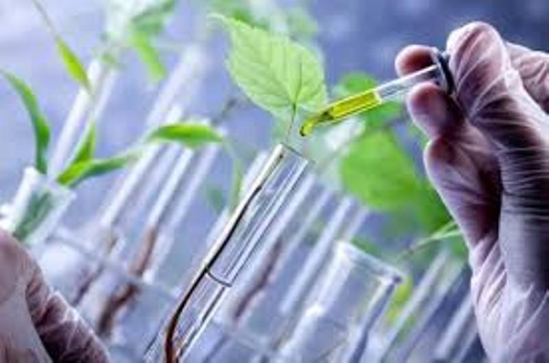 شتاب زیست فناوری کشور با شتابدهنده ها