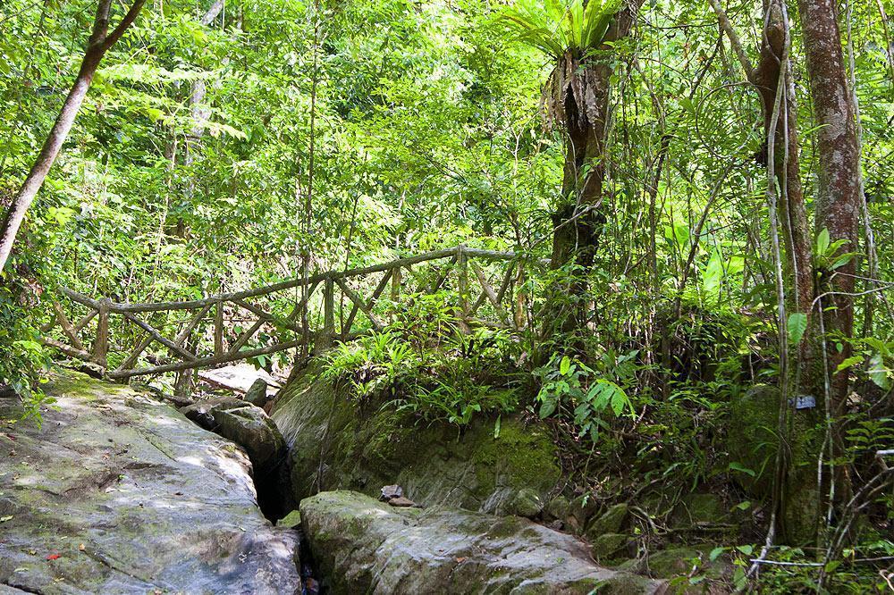 آشنایی با پارک ملی خاو پرا تاو پوکت