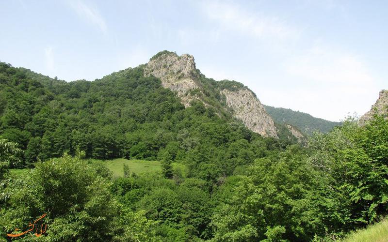 جنگل های هیرکانی ایران در میراث جهانی (یونسکو) ثبت شد