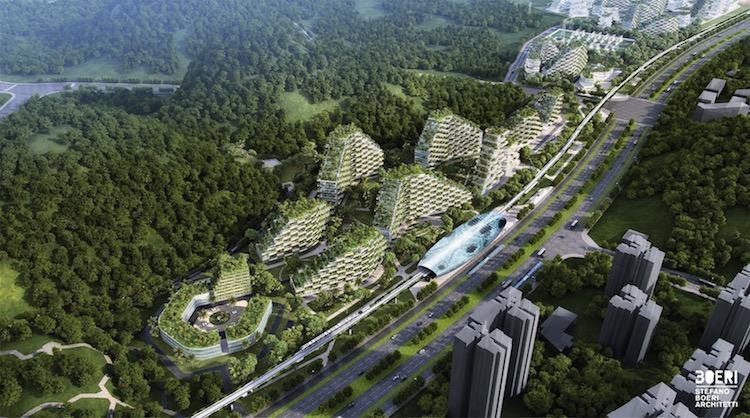 نخستین شهر جنگلی در چین با بیش از 1 میلیون گیاه