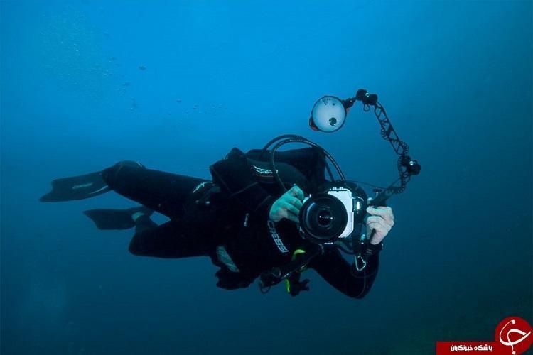 اشتباهاتی که عکاسان مبتدی در عکاسی زیر آب مرتکب می شوند!