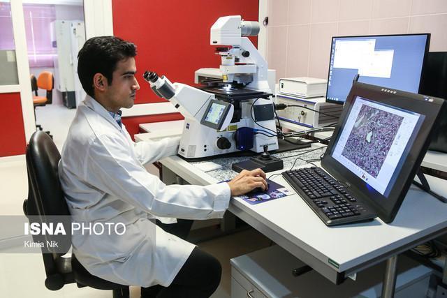 خدمات اولیه رایگان در مرکز درمان ناباروری ابن سینا