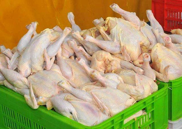 ممنوعیت خرد کردن گوشت مرغ در مرغ فروشی های چهارمحال و بختیاری