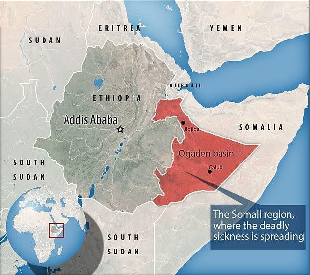 شیوع بیماری مرموز در اتیوپی: خونریزی از دهان و بینی و مرگ