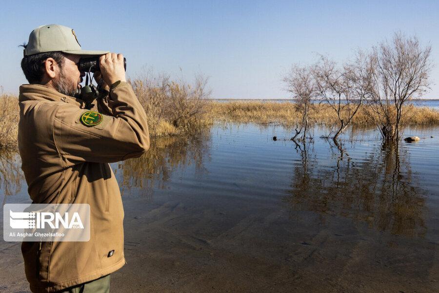 شکارچیان متخلف موجب مصدومیت 25 محیط بان شدند
