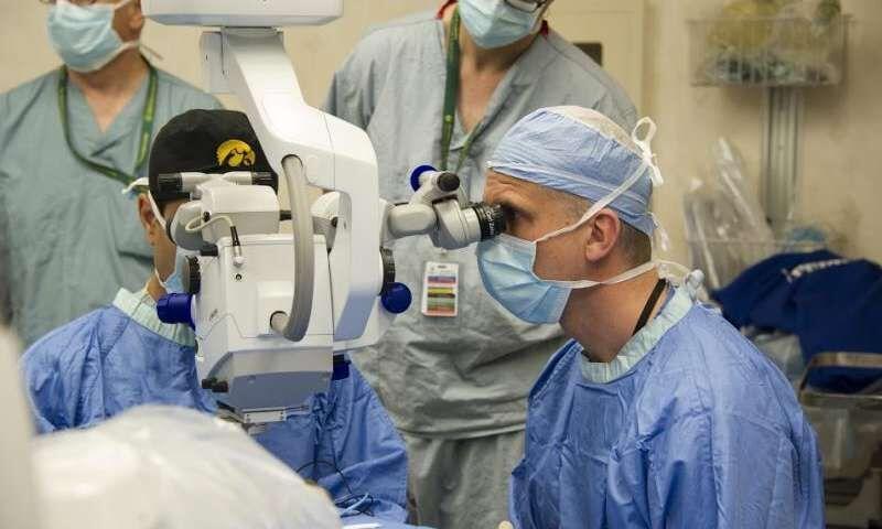 خبرنگاران احیای بینایی با استفاده از ژن درمانی و الهام از چشم مار