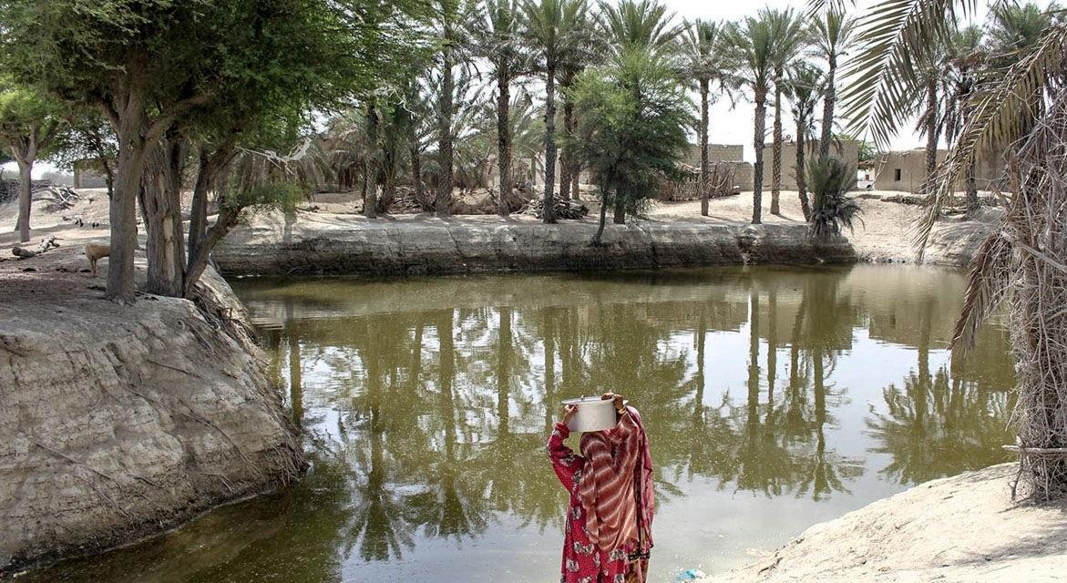 مرثیه سرایی برای کم آبی سیستان و بلوچستان پایان ندارد ، مردمی که از آب چهارپایان می نوشند!