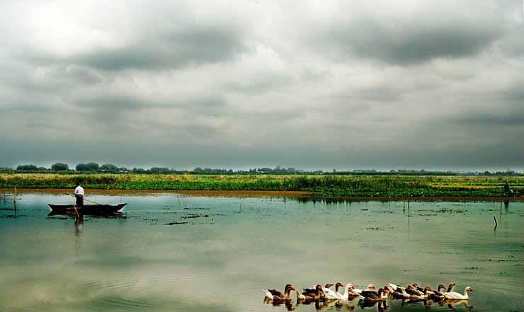 آشنایی با تالاب زیبای لنگور در مازندران