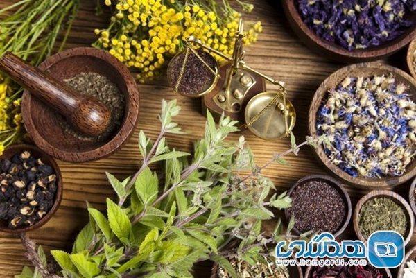 راهکارهای پیشگیری و درمان سردرد در طب ایرانی