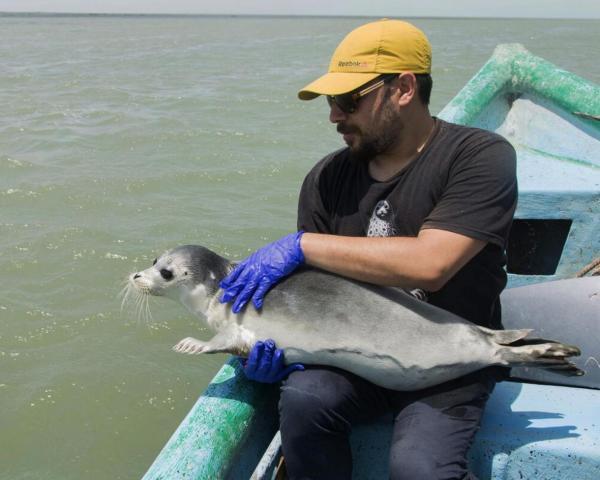 کاهش 18 متری عمق دریای خزر تا سرانجام قرن