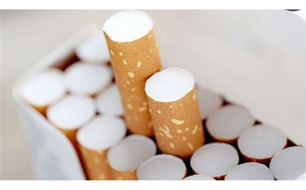 ضرورت پیگیری برنامه های کنترل و مبارزه با دخانیات